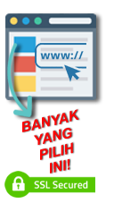 website-page-SSL-choosen.png
